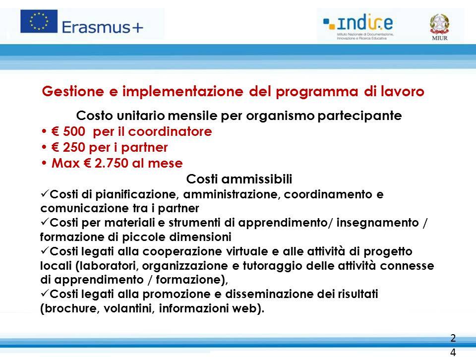 24 Gestione e implementazione del programma di lavoro Costo unitario mensile per organismo partecipante € 500 per il coordinatore € 250 per i partner