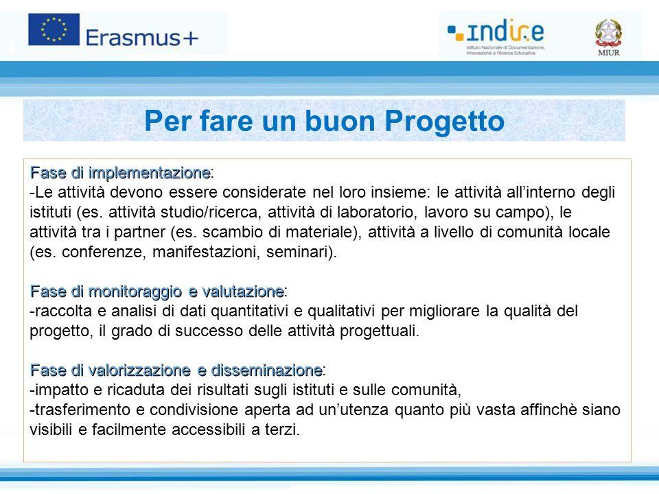 Fase di implementazione Fase di implementazione: -Le attività devono essere considerate nel loro insieme: le attività all'interno degli istituti (es.