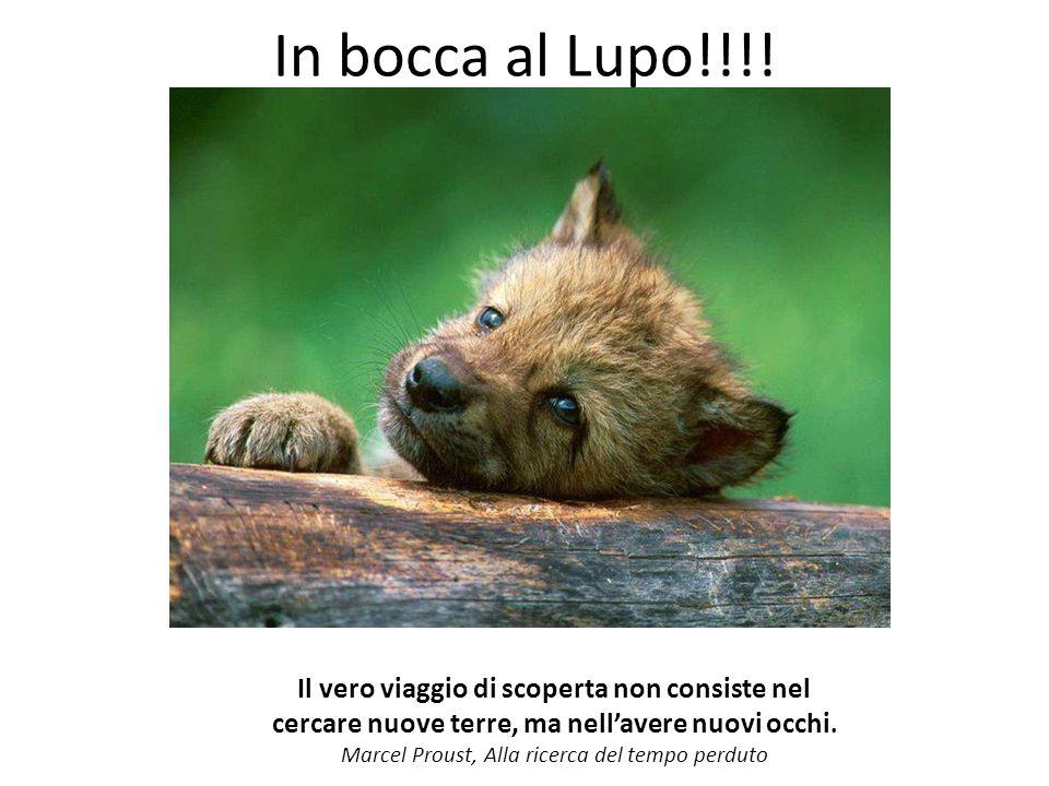 In bocca al Lupo!!!.