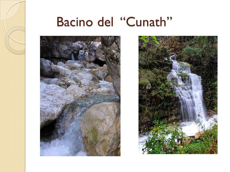 "Bacino del ""Cunath"""