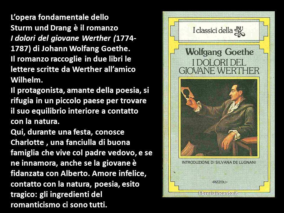 L'opera fondamentale dello Sturm und Drang è il romanzo I dolori del giovane Werther (1774- 1787) di Johann Wolfang Goethe. Il romanzo raccoglie in du