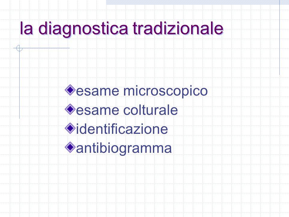 la diagnostica tradizionale esame microscopico esame colturale identificazione antibiogramma