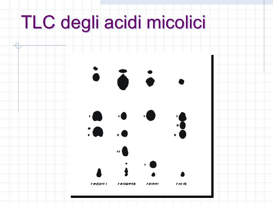 esempi di profili HPLC SI