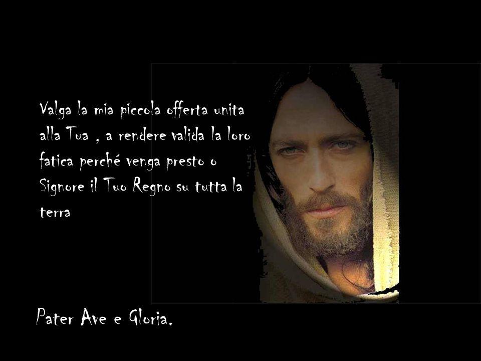 Con Te al Padre sulla medesima Croce io offro la mia sofferenza unita alla Tua per quanti non la conoscono ancora ed imploro alla messe copiosa gli op