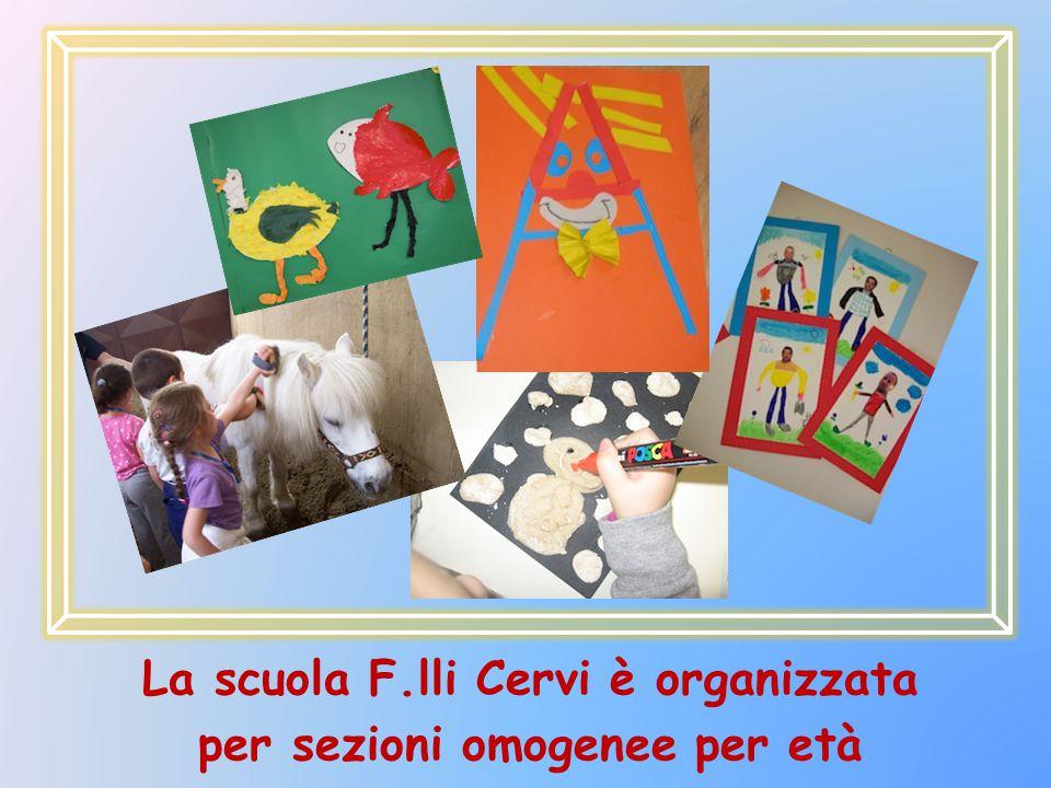 La scuola F.lli Cervi è organizzata per sezioni omogenee per età