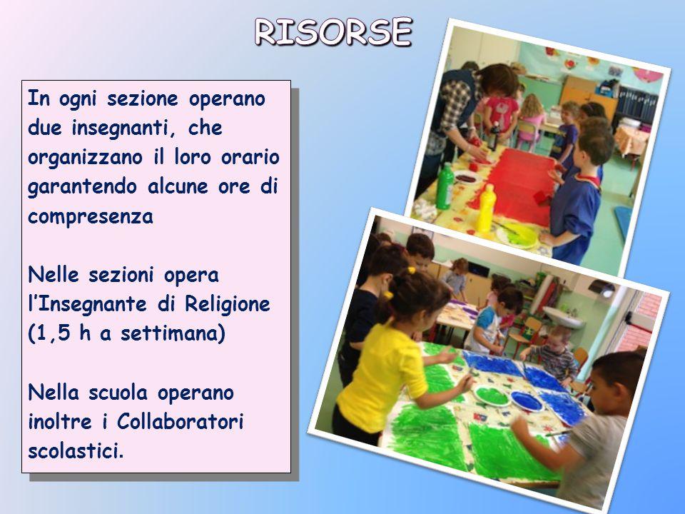 In ogni sezione operano due insegnanti, che organizzano il loro orario garantendo alcune ore di compresenza Nelle sezioni opera l'Insegnante di Religi