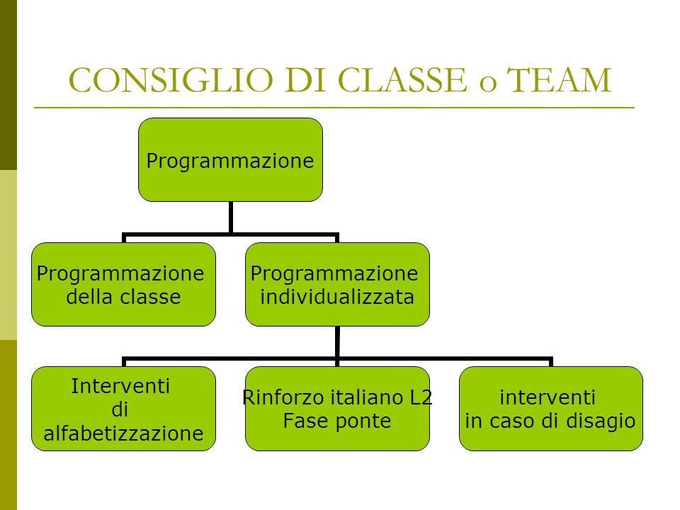 CONSIGLIO DI CLASSE o TEAM Programmazione della classe Programmazione individualizzata Interventi di alfabetizzazione Rinforzo italiano L2 Fase ponte