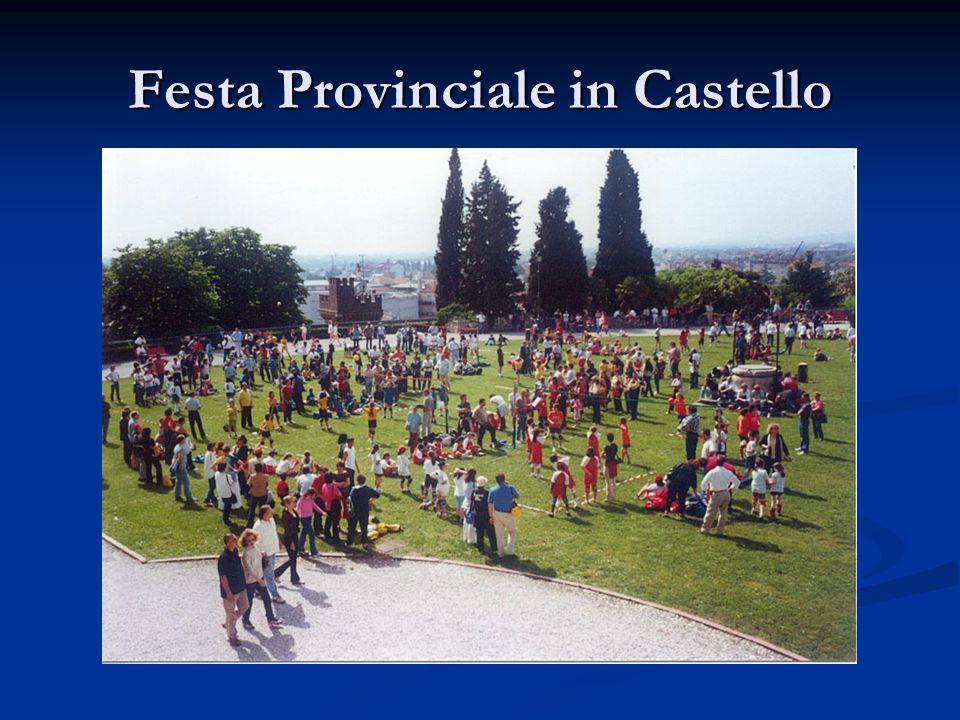 Festa Provinciale in Castello