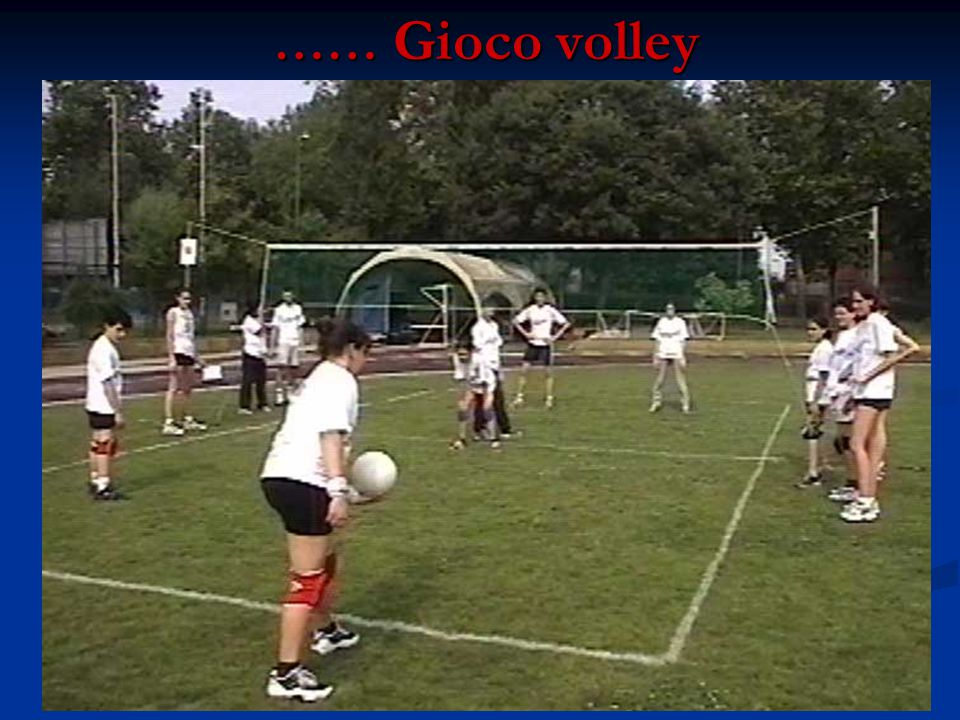 …… Gioco volley …… Gioco volley