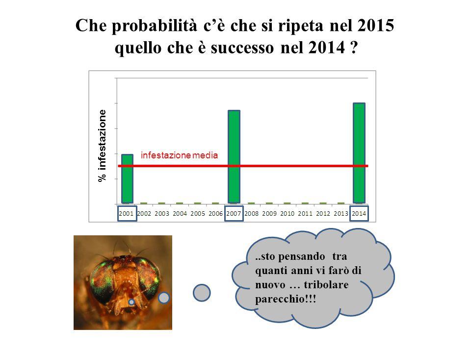 Che probabilità c'è che si ripeta nel 2015 quello che è successo nel 2014 ?..sto pensando tra quanti anni vi farò di nuovo … tribolare parecchio!!.