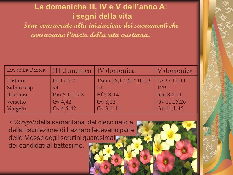 Le domeniche III, IV e V dell'anno A: i segni della vita Sono consacrate alla iniziazione dei sacramenti che consacrano l'inizio della vita cristiana.