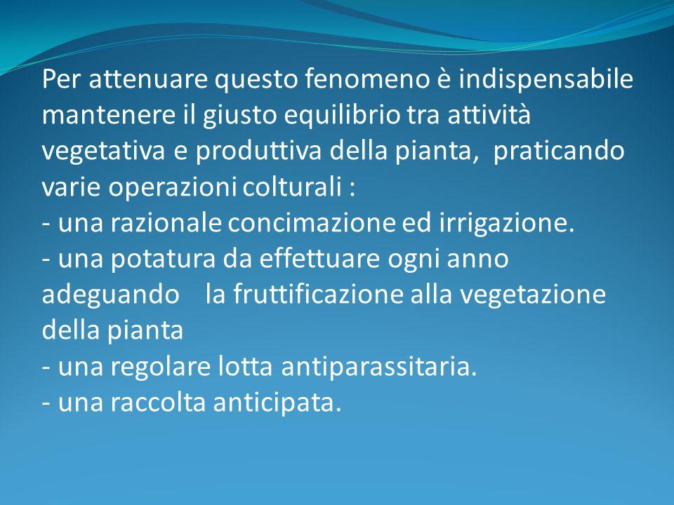 Per attenuare questo fenomeno è indispensabile mantenere il giusto equilibrio tra attività vegetativa e produttiva della pianta, praticando varie oper