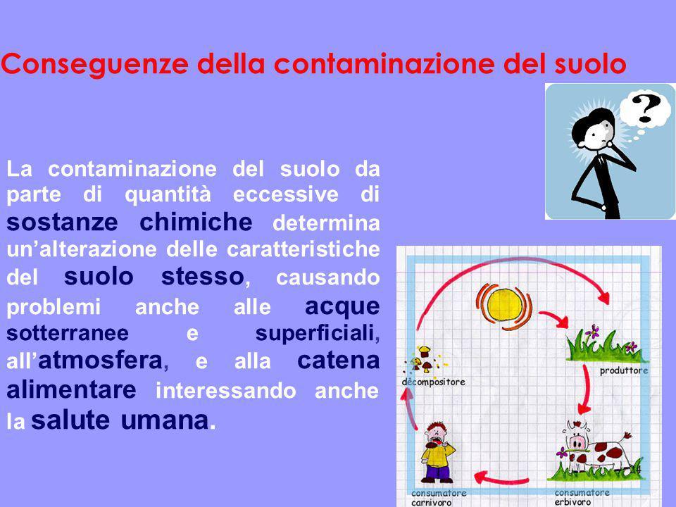 Conseguenze della contaminazione del suolo La contaminazione del suolo da parte di quantità eccessive di sostanze chimiche determina un'alterazione de