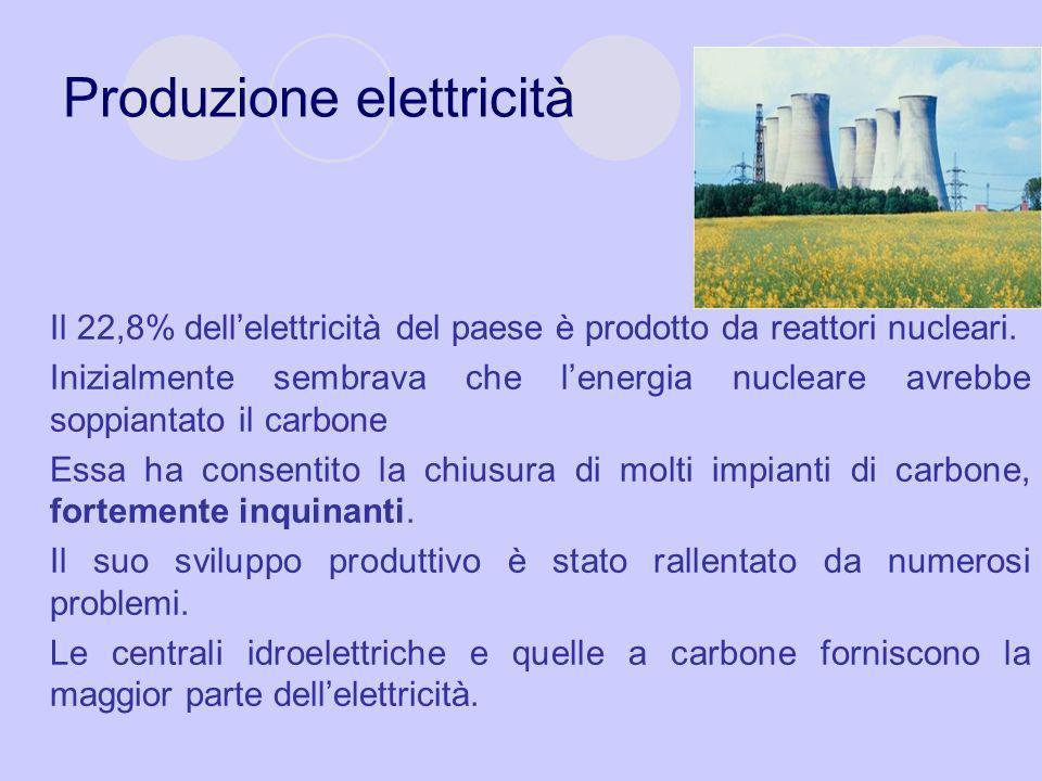 Produzione elettricità Il 22,8% dell'elettricità del paese è prodotto da reattori nucleari. Inizialmente sembrava che l'energia nucleare avrebbe soppi