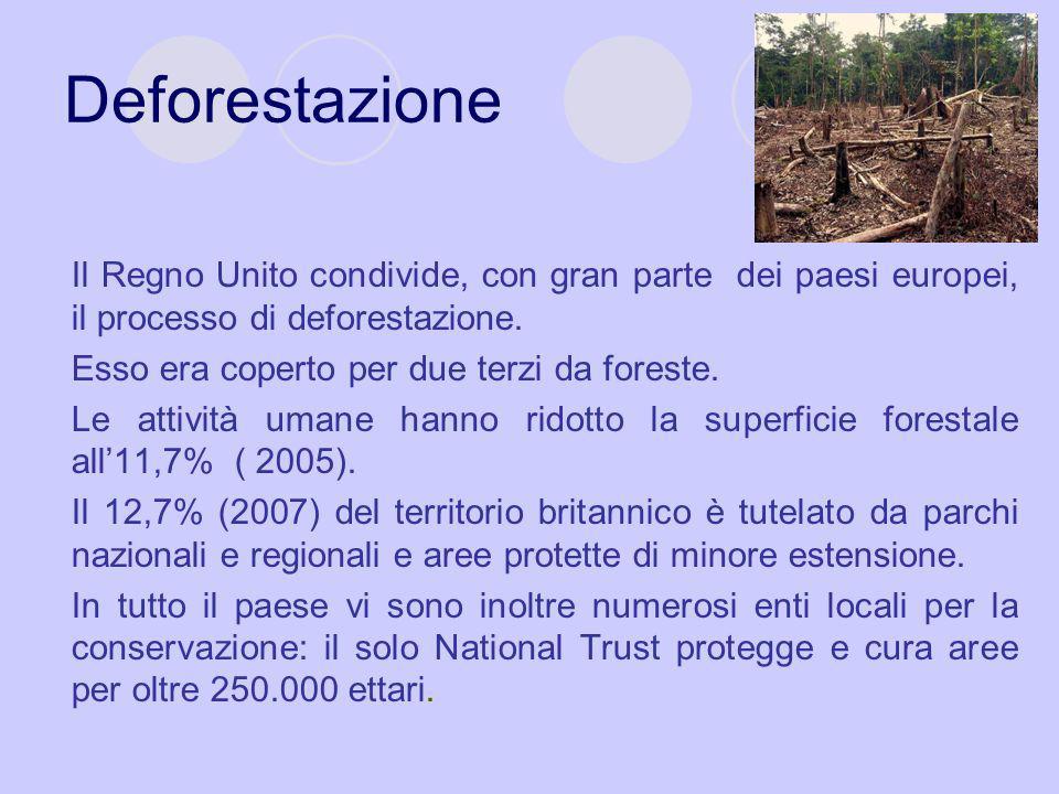 Deforestazione Il Regno Unito condivide, con gran parte dei paesi europei, il processo di deforestazione. Esso era coperto per due terzi da foreste. L
