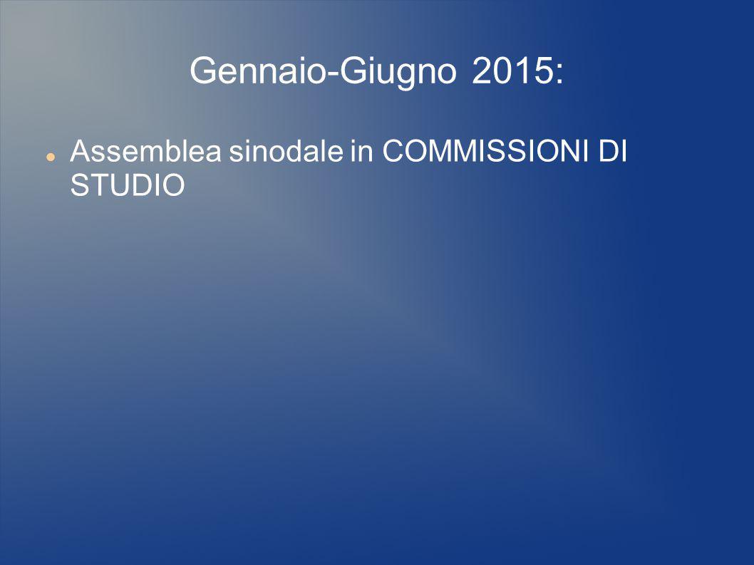 Gennaio-Giugno 2015: Assemblea sinodale in COMMISSIONI DI STUDIO