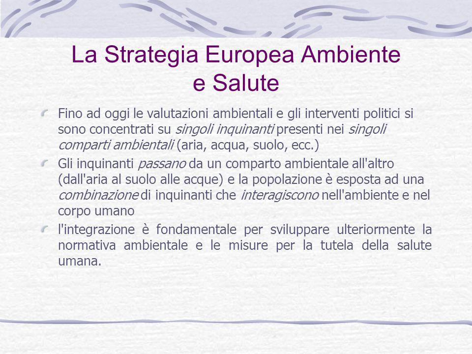 La Strategia Europea Ambiente e Salute Il valore aggiunto apportato dalla Strategia consiste nello sviluppo di un sistema comunitario che integri le informazioni sullo stato dell ambiente, sull ecosistema e sulla salute umana.