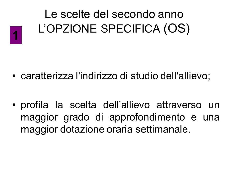 LE MATERIE DI MATURITA' LE DISCIPLINE FONDAMENTALI (11) L'OPZIONE SPECIFICA L'OPZIONE COMPLEMENTARE IL LAVORO DI MATURITA' 6