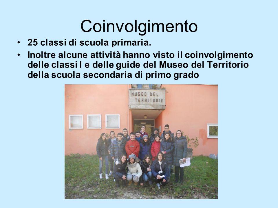 Coinvolgimento 25 classi di scuola primaria. Inoltre alcune attività hanno visto il coinvolgimento delle classi I e delle guide del Museo del Territor
