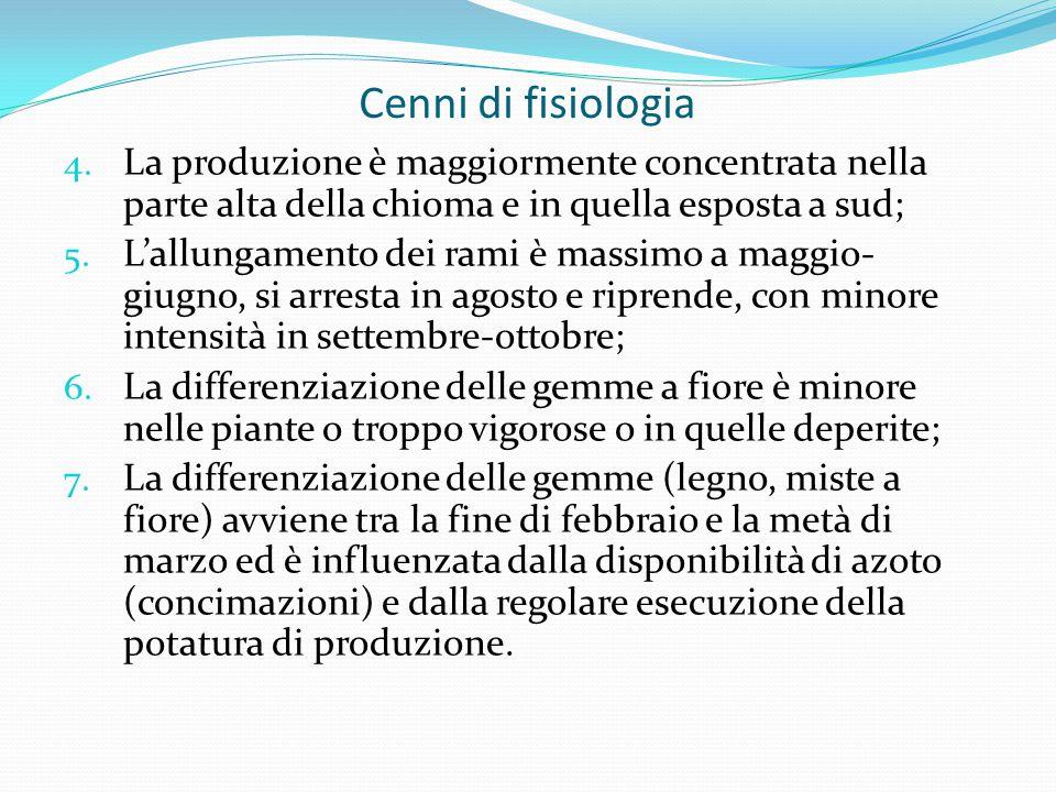 Cenni di fisiologia 4.