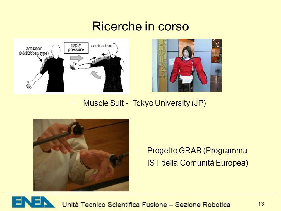 13 Ricerche in corso Progetto GRAB (Programma IST della Comunità Europea) Muscle Suit - Tokyo University (JP)