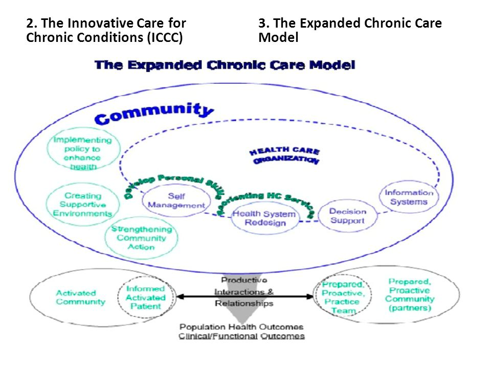 2. The Innovative Care for Chronic Conditions (ICCC) 3. The Expanded Chronic Care Model