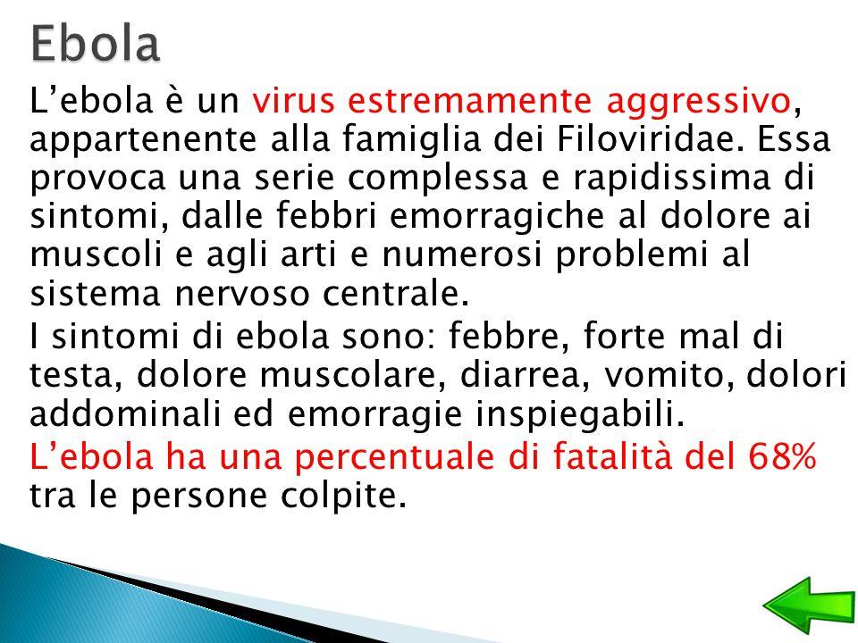 L'ebola è un virus estremamente aggressivo, appartenente alla famiglia dei Filoviridae. Essa provoca una serie complessa e rapidissima di sintomi, dal
