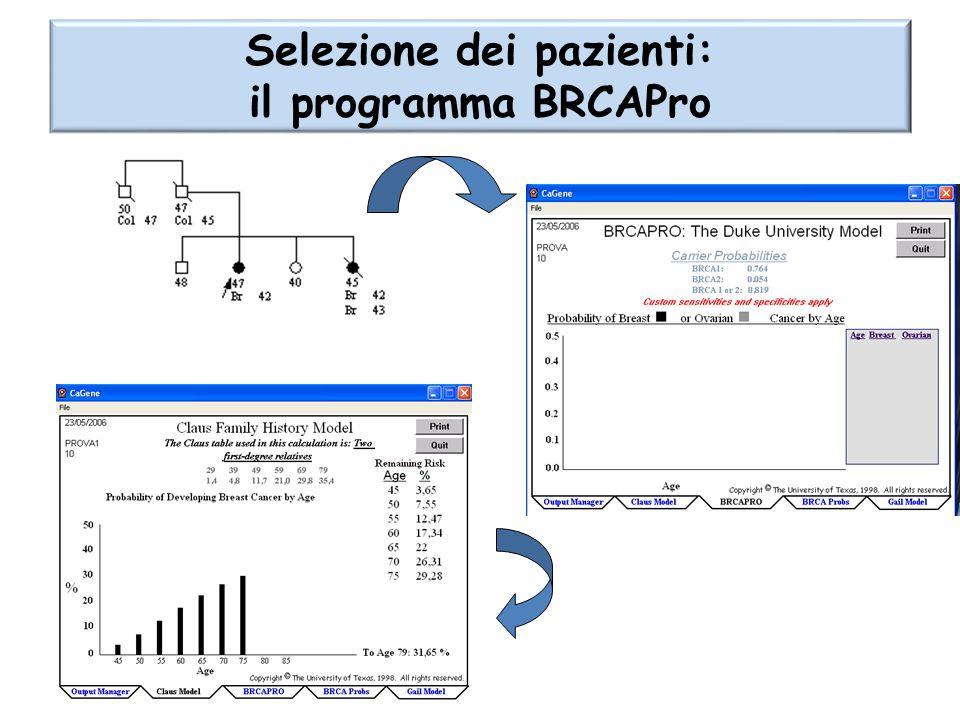 Selezione dei pazienti: il programma BRCAPro