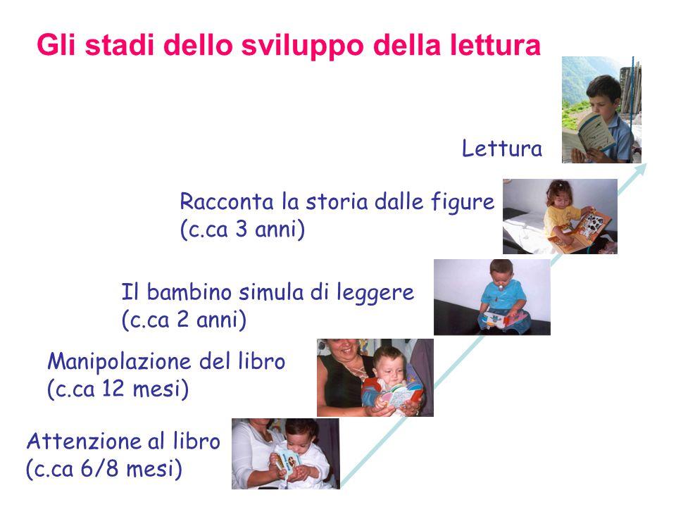Gli stadi dello sviluppo della lettura Attenzione al libro (c.ca 6/8 mesi)  Manipolazione del libro (c.ca 12 mesi)  Il bambino simula di leggere (c.