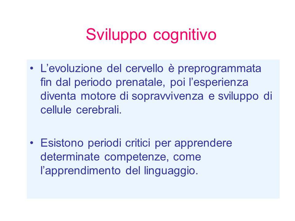 La seconda lingua L esposizione precoce a due lingue non compromette l apprendimento linguistico, anzi produce un ampliamento più generale delle competenze cognitive e delle abilità sociali