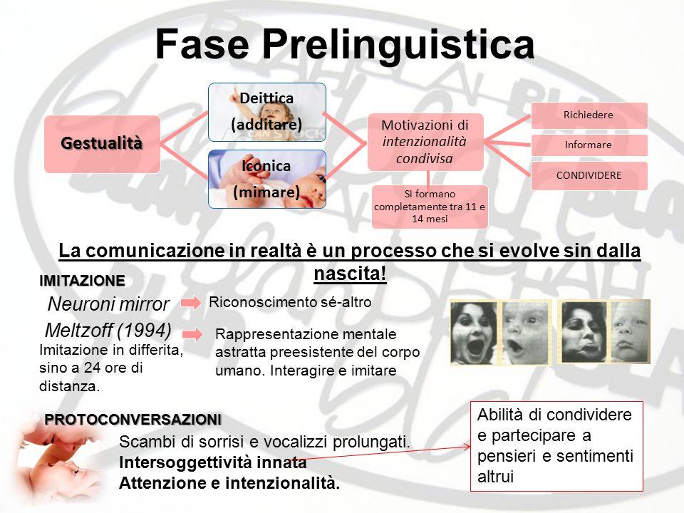 Fase Prelinguistica La comunicazione in realtà è un processo che si evolve sin dalla nascita! IMITAZIONE Neuroni mirror Riconoscimento sé-altro Meltzo