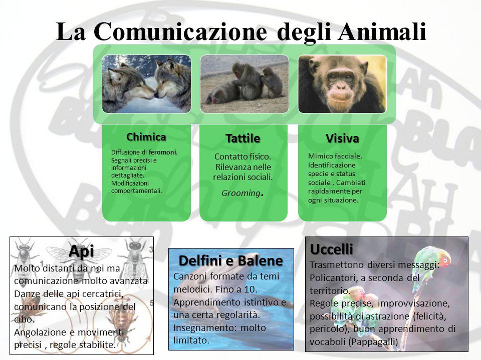 La Comunicazione degli AnimaliChimica Diffusione di feromoni. Segnali precisi e informazioni dettagliate. Modificazioni comportamentali.Tattile Contat