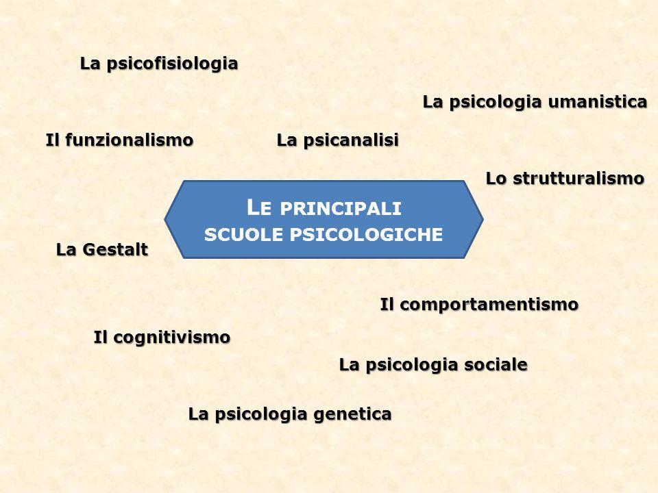 La professione dello psicologo Psico-terapeuta Clinico Ricerca Psico-pedagogista Psicologo di comunità Mondo del lavoro