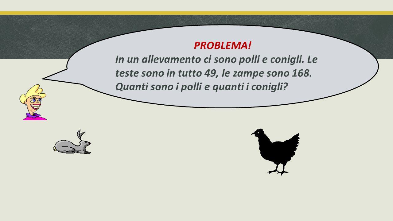 La somma degli animali è 49 (ogni animale ha una testa) La somma delle zampe è 168 (i polli hanno 2 zampe, i conigli hanno 4 zampe ) Le zampe sono 168 Le teste sono 49 Federica, Marcello e Dario hanno individuato i dati Quanti sono i polli e quanti i conigli?