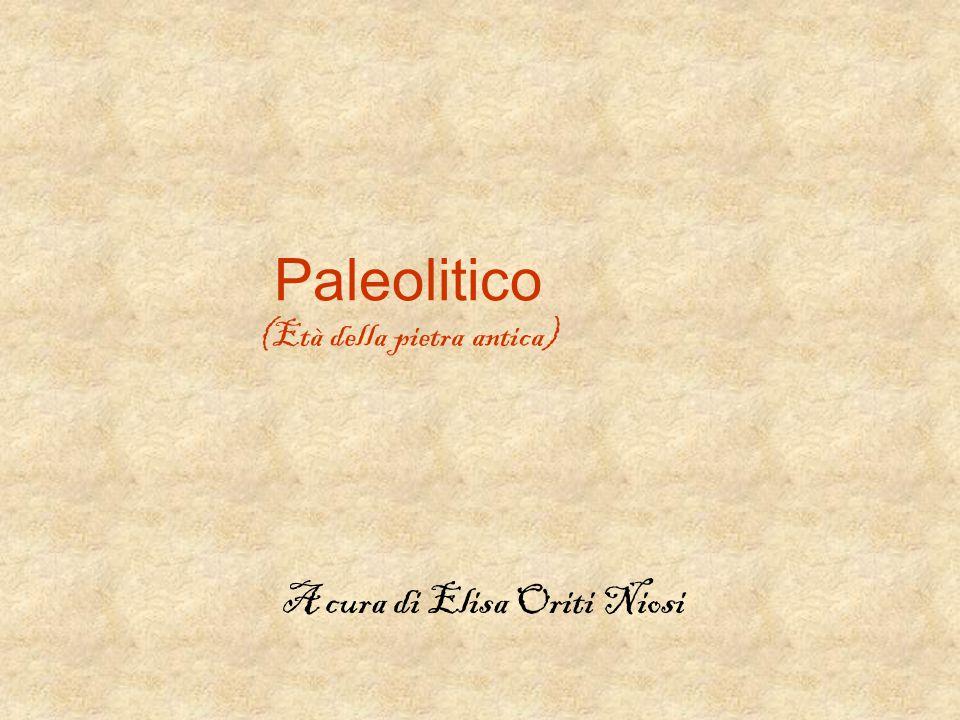 Paleolitico (Età della pietra antica) A cura di Elisa Oriti Niosi