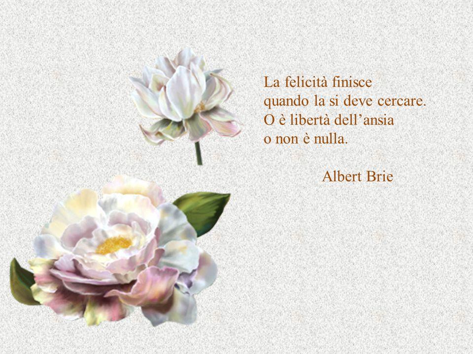 La felicità finisce quando la si deve cercare. O è libertà dell'ansia o non è nulla. Albert Brie