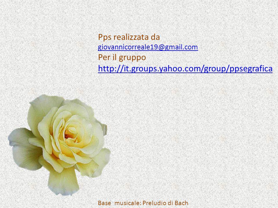 Pps realizzata da giovannicorreale19@gmail.com Per il gruppo http://it.groups.yahoo.com/group/ppsegrafica Base musicale: Preludio di Bach