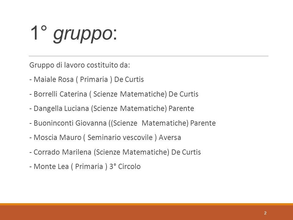 1° gruppo: Gruppo di lavoro costituito da: - Maiale Rosa ( Primaria ) De Curtis - Borrelli Caterina ( Scienze Matematiche) De Curtis - Dangella Lucian