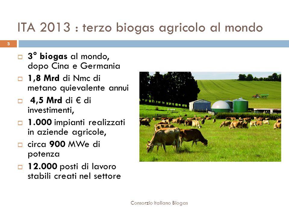 ITA 2013 : terzo biogas agricolo al mondo  3° biogas al mondo, dopo Cina e Germania  1,8 Mrd di Nmc di metano quievalente annui  4,5 Mrd di € di investimenti,  1.000 impianti realizzati in aziende agricole,  circa 900 MWe di potenza  12.000 posti di lavoro stabili creati nel settore 3 Consorzio Italiano Biogas