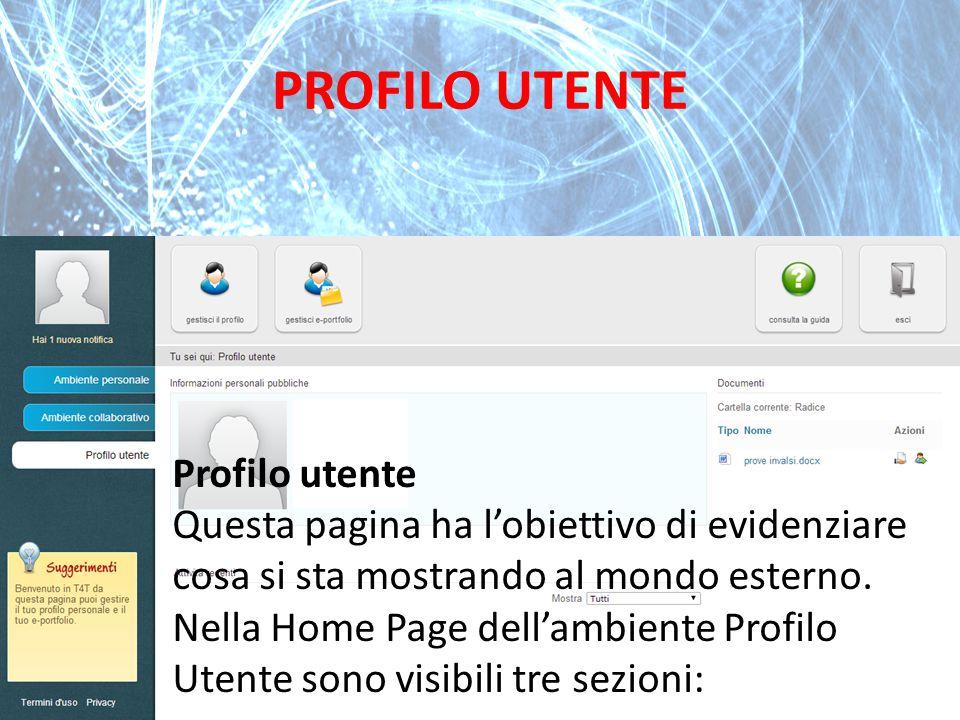PROFILO UTENTE Profilo utente Questa pagina ha l'obiettivo di evidenziare cosa si sta mostrando al mondo esterno. Nella Home Page dell'ambiente Profil