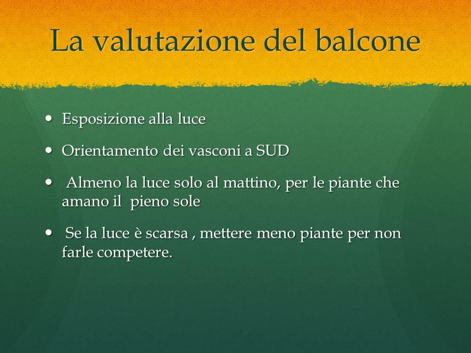 La valutazione del balcone Esposizione alla luce Esposizione alla luce Orientamento dei vasconi a SUD Orientamento dei vasconi a SUD Almeno la luce so