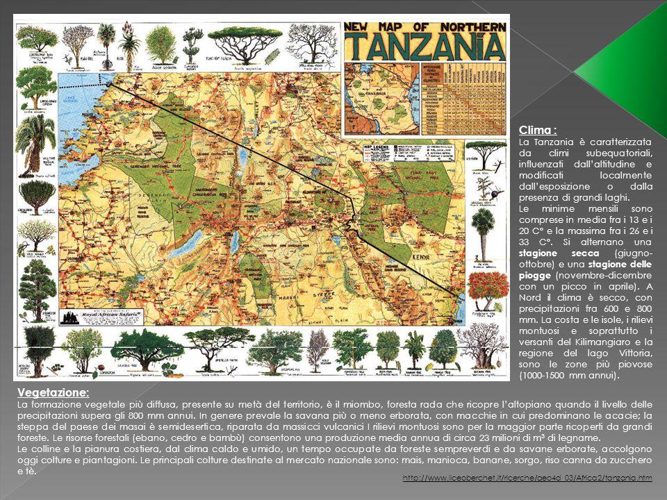 Clima : La Tanzania è caratterizzata da climi subequatoriali, influenzati dall'altitudine e modificati localmente dall'esposizione o dalla presenza di