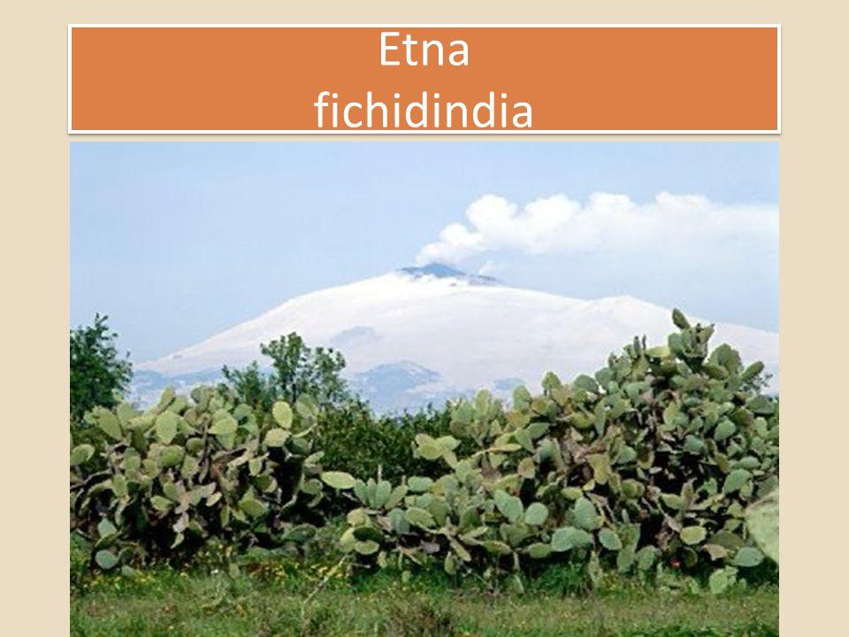 Etna fichidindia Etna fichidindia