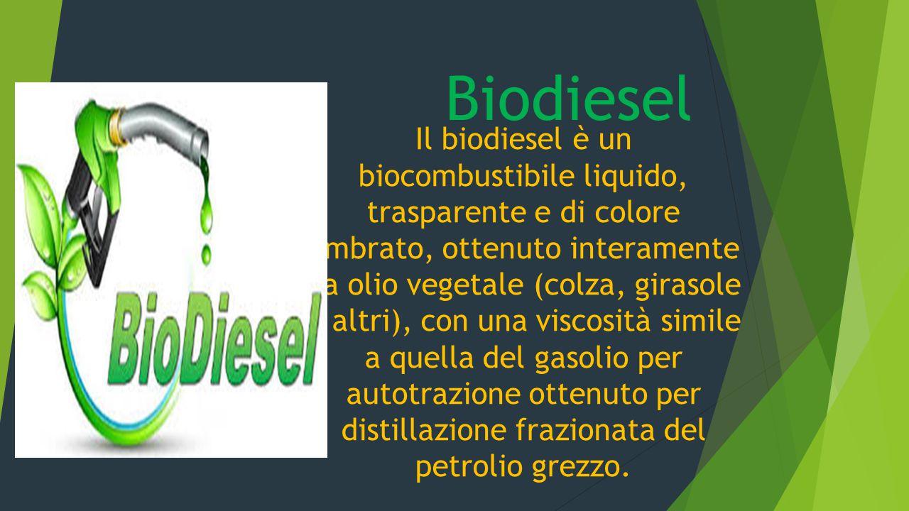 Biodiesel Il biodiesel è un biocombustibile liquido, trasparente e di colore ambrato, ottenuto interamente da olio vegetale (colza, girasole o altri),