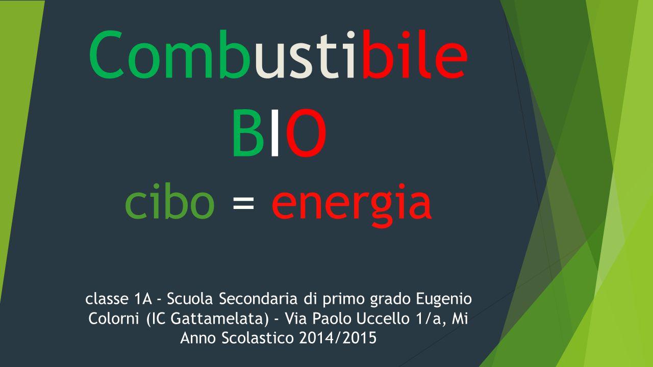 Combustibile BIO cibo = energia classe 1A - Scuola Secondaria di primo grado Eugenio Colorni (IC Gattamelata) - Via Paolo Uccello 1/a, Mi Anno Scolast