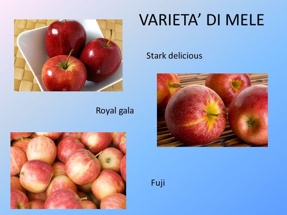 Succo di frutta Yogurt con mela Cereali con frutta essiccata Le mele vengono impiegate per la preparazione di succhi di frutta, aggiunte allo yogurt, e inoltre vengono essiccate.
