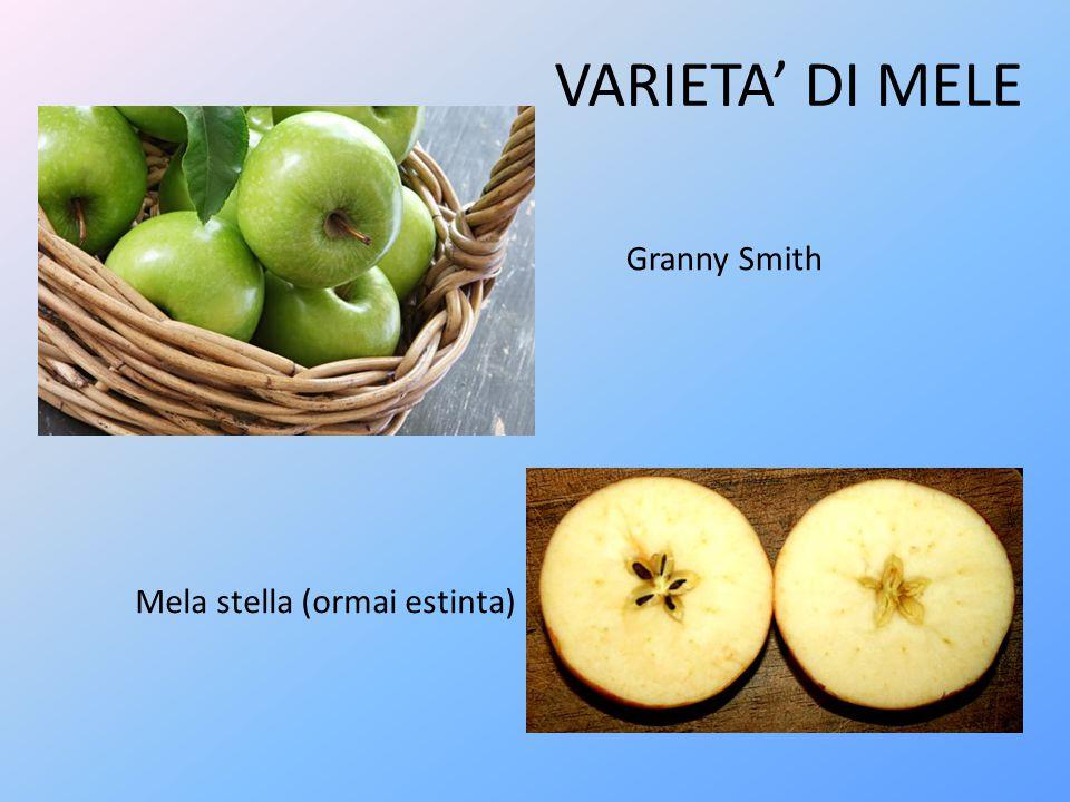 COLTIVAZIONE Il melo è una pianta che sa adattarsi molto bene a una gran varietà di terreni, quelli più adatti alla sua coltivazione sono i terreni profondi, dotati di buon drenaggio e non eccessivamente calcarei.