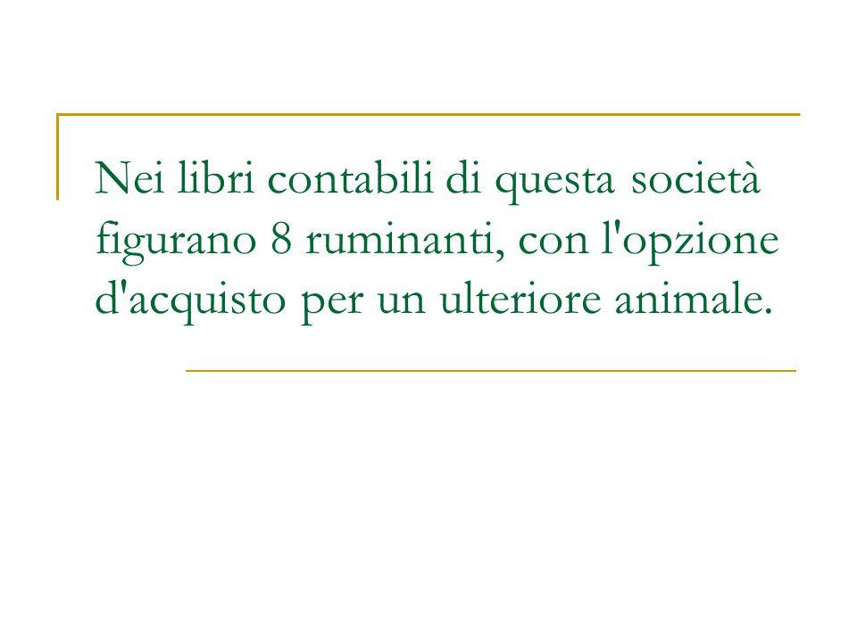 Nei libri contabili di questa società figurano 8 ruminanti, con l'opzione d'acquisto per un ulteriore animale.