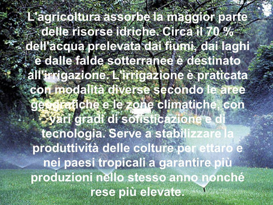 L'agricoltura assorbe la maggior parte delle risorse idriche. Circa il 70 % dell'acqua prelevata dai fiumi, dai laghi e dalle falde sotterranee è dest