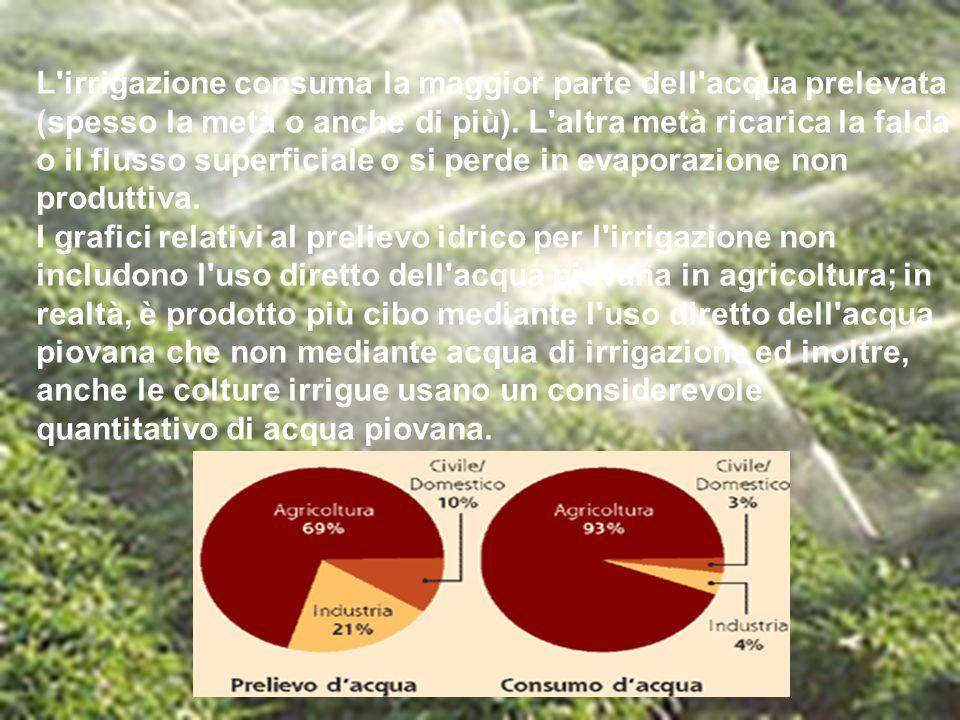 L'irrigazione consuma la maggior parte dell'acqua prelevata (spesso la metà o anche di più). L'altra metà ricarica la falda o il flusso superficiale o
